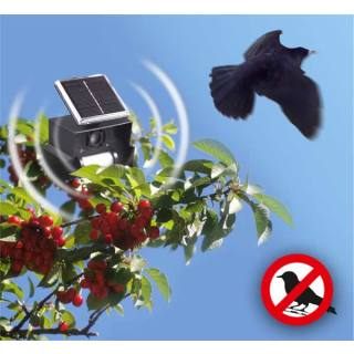 Solar-powered bird repeller