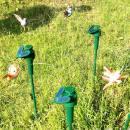 Colibri volant solaire