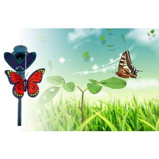 Fliegender Solar-Schmetterling