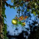 Solar Bug Light