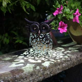 Solar Silhouette Owl