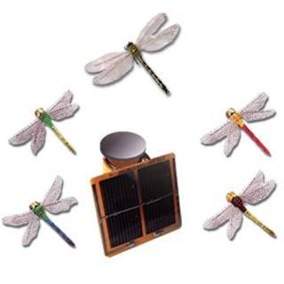 Solar-Bewegungsmodell Libelle